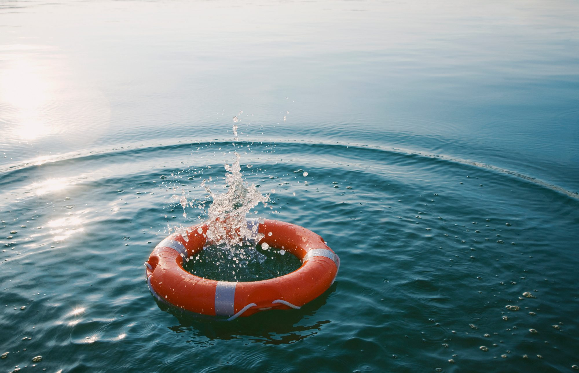 Lifesaver floating in the water